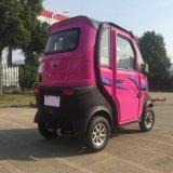 1000W Scooter Eléctrico Automóvel de passageiros para 3 Pessoa