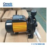 Cpm-Serie elektrische Centrifugel Pumpe