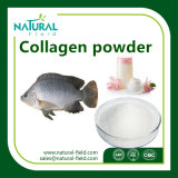 Polvo del colágeno de los pescados del producto de cuidado de piel