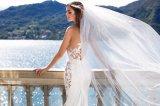 人魚の夕方のプロムのウェディングドレスの花嫁衣装
