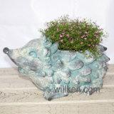 Flowerpot формы черепахи античного типа Cyan