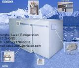 La sala de almacenamiento en frío a pie en la cámara frigorífica Coldroom