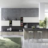 Il nuovo Cabinetry del Pantry di disegno progetta gli armadi da cucina per il cliente moderni con guadagno di legno solido