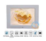 8 인치 - 고품질 중국 LCD 디지털 사진 프레임 (MW-084DPF)