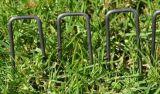 Il giardino cuce con punti metallici i chiodi a forma di U del tappeto erboso, perni del tappeto erboso
