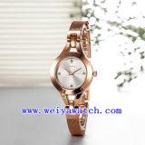 Wristwatches сплава вахты промотирования классицистические (WY-021E)