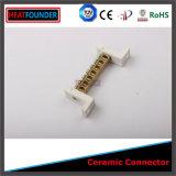 Terminale di ceramica d'ottone del connettore di alta qualità (palo 5)
