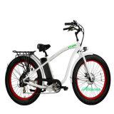 리튬 건전지를 가진 모든 합금 프레임 48V 750W 전기 자전거