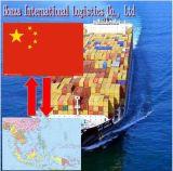 Il professionista & l'aria di mare di trasporto/esprimono dalla Cina ad Asia Sud-Orientale