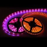 Flexible de Alta Calidad 3528 120LED/M DE TIRA DE LEDS al aire libre