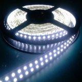 Colorare la striscia variabile 24V di bassa tensione LED