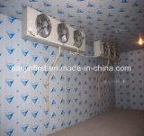 Chambre froide de bonne qualité bon marché de congélateurs à air forcé/entreposage au froid