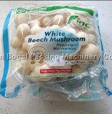 Aprovado pela CE com bandeja de cogumelos de máquinas de cintagem de embalagem