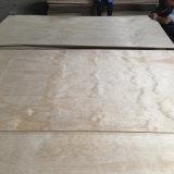 Construcción de la madera contrachapada con el grado del pegamento B/C de la plataforma WBP del pino