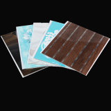 250mm*6/7/8mmの正常な印刷PVC天井の装飾のパネル(RN-99)