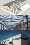 Almacén de varios pisos grande de la estructura de acero