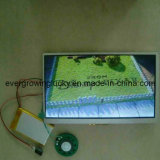 Модуль видеоего поздравительной открытки экрана касания