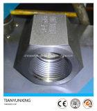 A105 3000lb ha forgiato la protezione filettata NPT del acciaio al carbonio