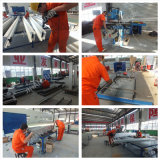 Sola elevación de la aleación de aluminio del mástil/plataforma de trabajo aéreo