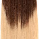 Human Hair Extension에 있는 2 Tone Ombre Color 브라질 Virgin Hair Clip