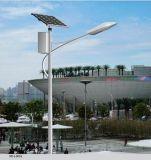 60W Solar Street Light met Street Light Fixture