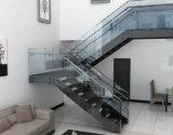 Fabricantes rectos estándar de la escalera de Stairplan de las escaleras/escalera recta de cristal en la pisada de madera