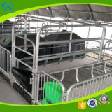 Landwirtschaft des galvanisierten Schwein-Pflanzenschule-Rahmen-Sau-Betts