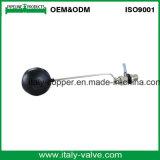 Valvola di galleggiante d'ottone personalizzata di qualità con la sfera di plastica (AV5026)