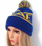 美しい縞のたくわえの暖かい編む帽子(S-1077)