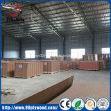 Las ventas de la fábrica filman directo la madera contrachapada hecha frente para la construcción