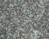 G664 Misty dalle de granit rouge brun et de tuiles