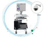 Système d'ERP de Digitals EEG de canaux de MCR-D 243648 (MCR-D)