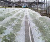 HDPE Virgin 농업을%s UV를 가진 물자 반대로 곤충 보호 그물