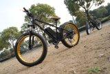 판매를 위한 Cnebikes 48V 750W 26*4 뚱뚱한 타이어 전기 자전거