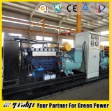25-800kw Biogas 발전기 (헥토리터)