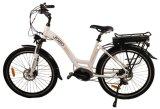 De 26 pulgadas del Motor de arranque eléctrico Dama bicicleta holandesa, 36V 250W Ciudad Eléctrica Bike-Jb-TDF21L