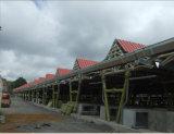 プレハブの鋼鉄構築の木造家屋