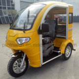 Trois roues Tricycle handicapés pour visiter la ville de moto