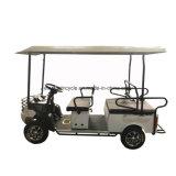 4 carrello di golf facente un giro turistico elettrico della sede della rotella 1200W 6 da vendere
