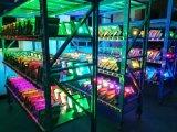 proiettore esterno di 100W RGB LED con colore che cambia gli indicatori luminosi impermeabili di obbligazione