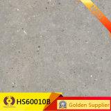плитка пола стены взгляда цемента серого цвета 600*600mm застекленная плиткой (HS60007)