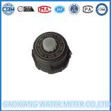 De plastic Nylon Volumetrische Meter van het Water (DN15-DN25)
