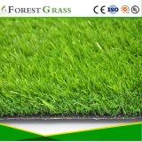 Лучшее качество искусственного ландшафта травы (МБ)