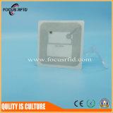 Tag RFID transparent d'animal familier pour le coût bon marché de véhicule et de gestion de patrimoine