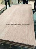 Marina / Ordianry de 3,6 mm de contrachapado de madera contrachapada