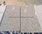 Preiswerteste PolierG603 Seasame hellgraue Granit-Fliese für Fußboden