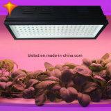 LED de alta potencia de la luz de crecimiento para la horticultura