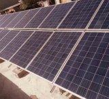 Comitati della pila solare della Cina 150W con 60 celle