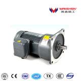 Vertikaler eingehangener 1-Phase übersetzter Motor Welle-Durchmesser-28mm mit Bremse