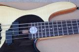 Taijiパターンが付いているHanhai音楽5ストリング電気ベースギター